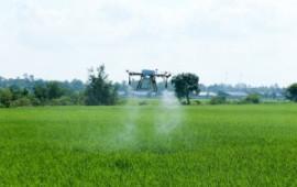 4 cách máy bay nông nghiệp đang giúp năng suất của nông dân